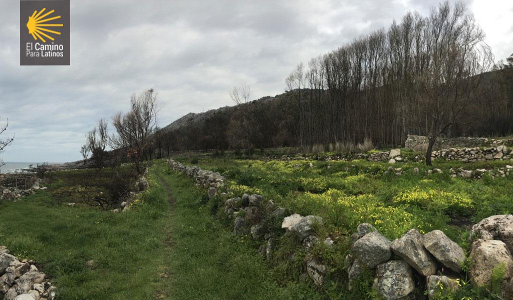 Camino de Santiago Portugues Costa