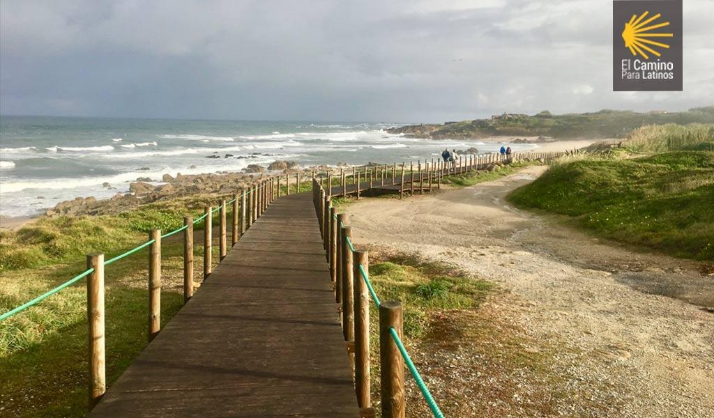 Caminar sobre madera costas portugal