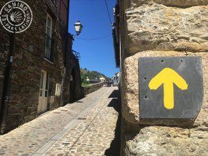 Mis Caminos de Santiago