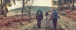 El Camino de Santiago en solitario o acompañado