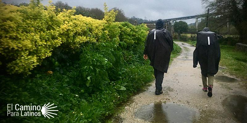 llueve en el Camino